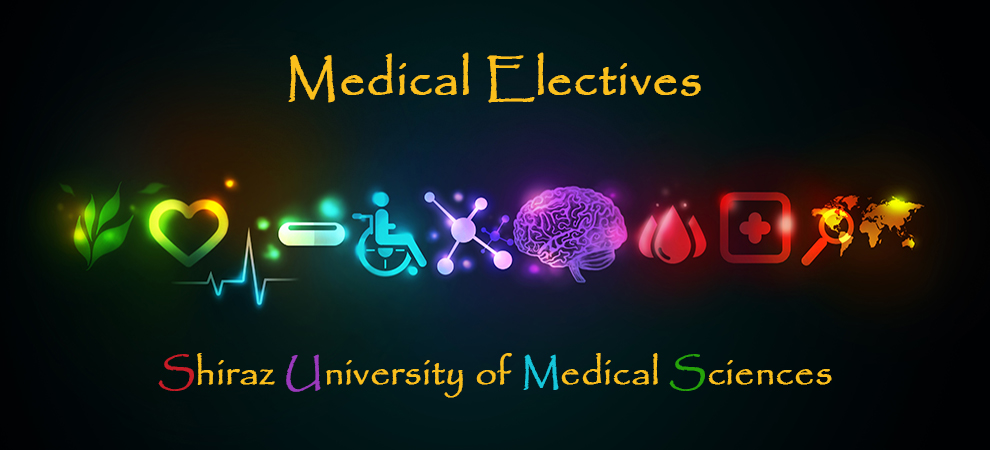 Medical Elective (Internship) Programs